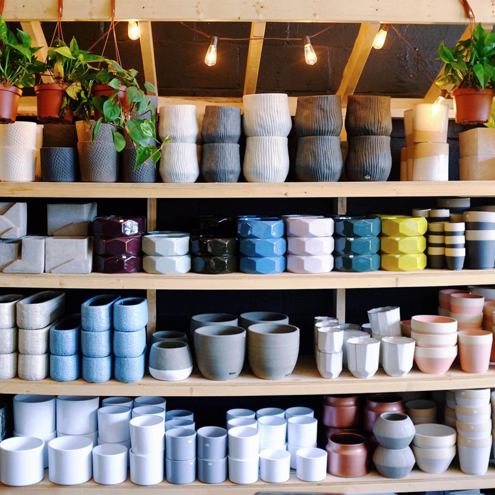 Plant store interior