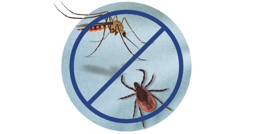 Les vêtements repoussent les tiques et les moustiques